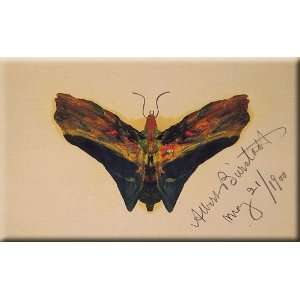 Butterfly (second version) 16x10 Streched Canvas Art by