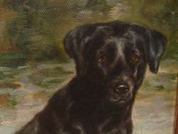third BLACK LAB LABRADOR RETRIEVER CANINE DOG PORTRAIT