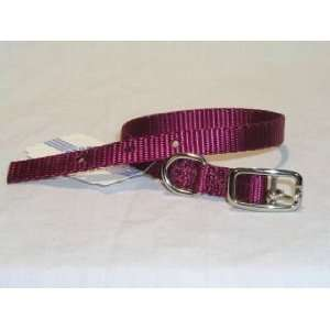 Hamilton Deluxe 3/8 S/T Nylon Dog Collar, Wine, 12