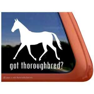 Got Thoroughbred? Horse Trailer Vinyl Window Decal Sticker