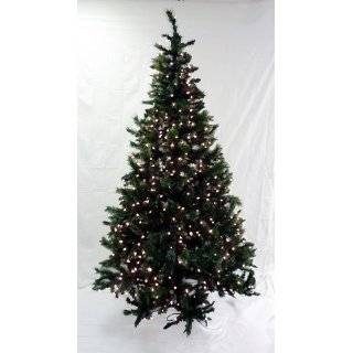 Lit Slim Black Ashley Spruce Artificial Christmas Tree   Clear Lights