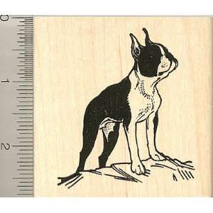 Large Boston Terrier Rubber Stamp   Wood Mounted Arts