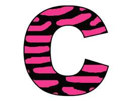 HOT PINK ZEBRA ALPHABET LETTER NAME WALL STICKER DECALS